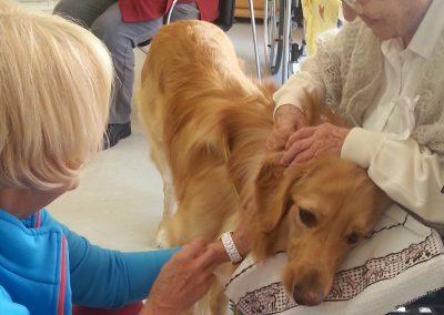 Therapiehunde-Teamausbildung-Seniorenheim