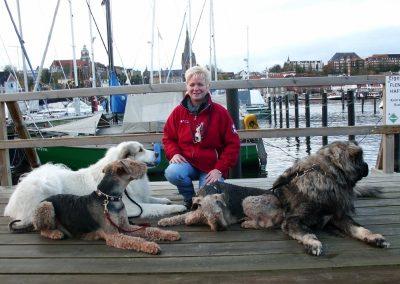 Braver Hund - Marianne Brand